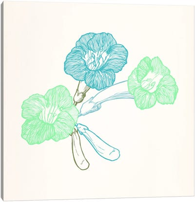 Violet (Green&Blue) Canvas Art Print