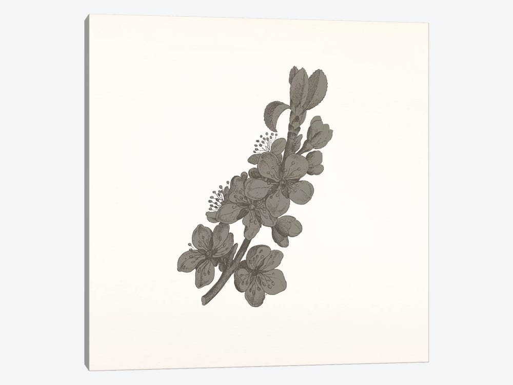 Flowers (Dark Gray) by 5by5collective 1-piece Art Print