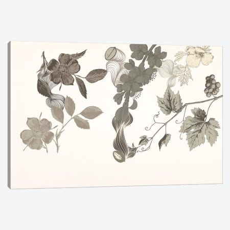 Flowers of No Colors Canvas Print #FLPN83} by 5by5collective Canvas Artwork