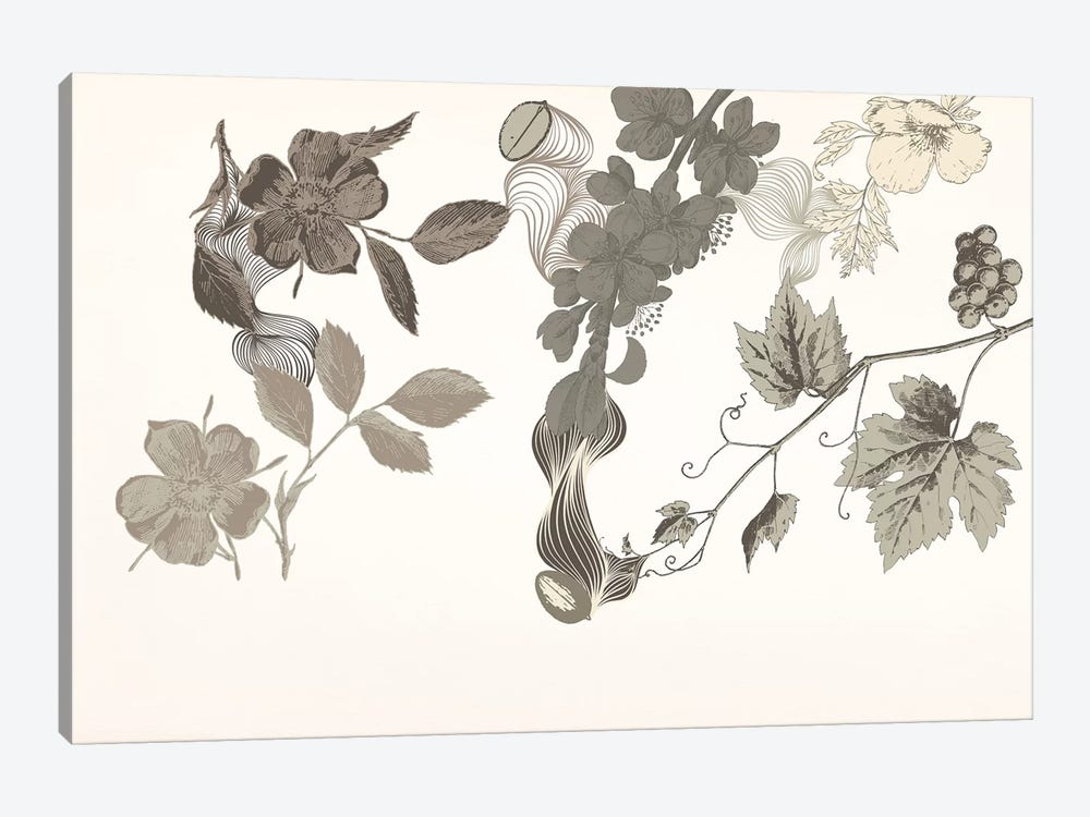 Flowers of No Colors by 5by5collective 1-piece Canvas Wall Art