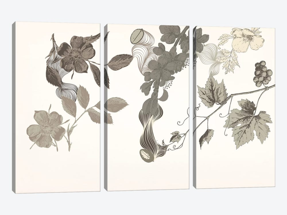 Flowers of No Colors by 5by5collective 3-piece Canvas Artwork