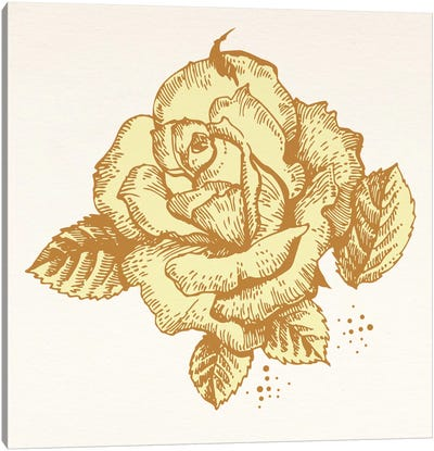 Yellow Rose Canvas Print #FLPN94
