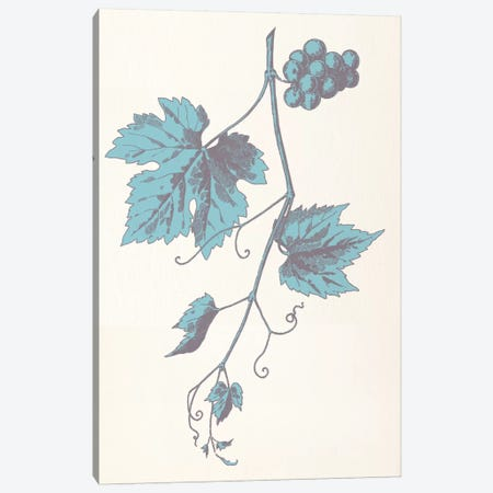Rowan Strig (Blue) Canvas Print #FLPN98} by 5by5collective Canvas Art Print