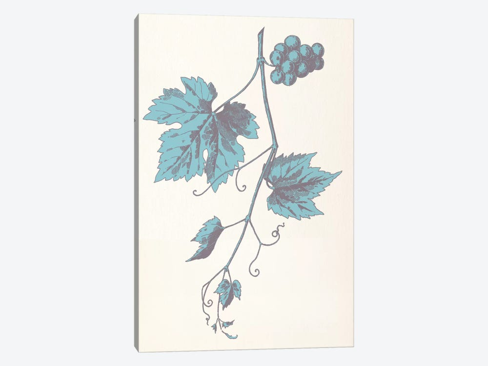 Rowan Strig (Blue) by 5by5collective 1-piece Canvas Artwork