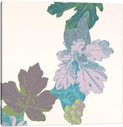 Leaves & Berries Canvas Print #FLPN99