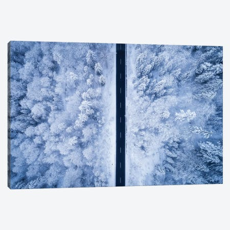 A Frosty Road Canvas Print #FLS2} by Daniel Fleischhacker Canvas Print