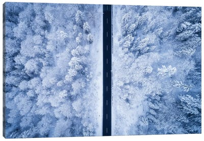 A Frosty Road Canvas Art Print