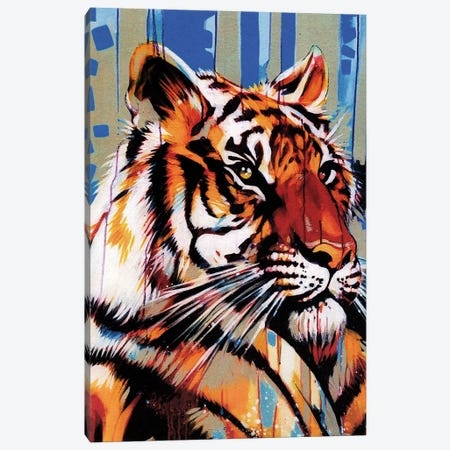 Majestic Canvas Print #FMO76} by Fernan Mora Canvas Print