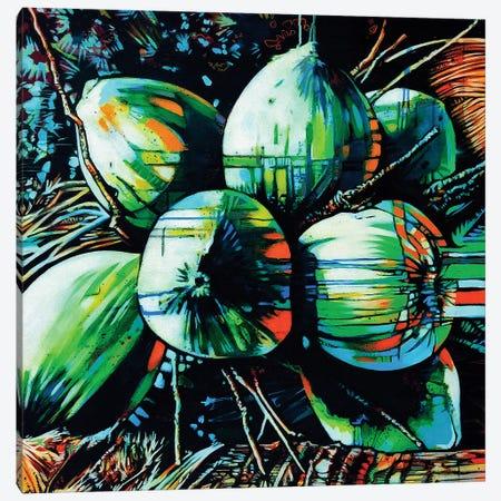 Tropical Fruit I Canvas Print #FMO90} by Fernan Mora Canvas Art