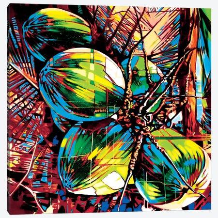 Tropical Fruit II Canvas Print #FMO91} by Fernan Mora Canvas Artwork