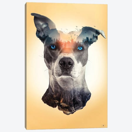 Dog Surreal Canvas Print #FNA75} by fndesignart Canvas Print