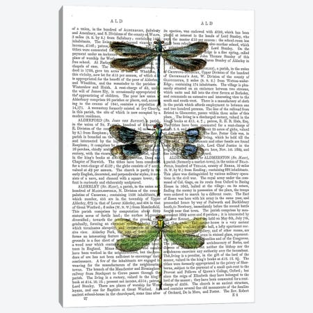 Dragonflies Print II 3-Piece Canvas #FNK1029} by Fab Funky Canvas Print