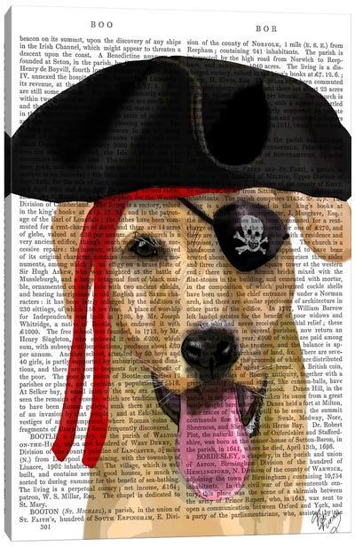 Yellow Labrador Pirate Canvas Print #FNK102