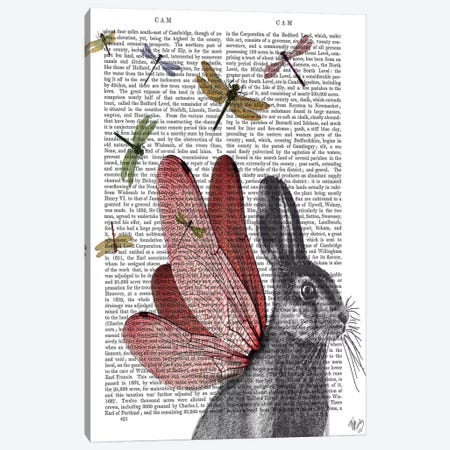 Dragonfly Hare Canvas Print #FNK1030} by Fab Funky Canvas Art