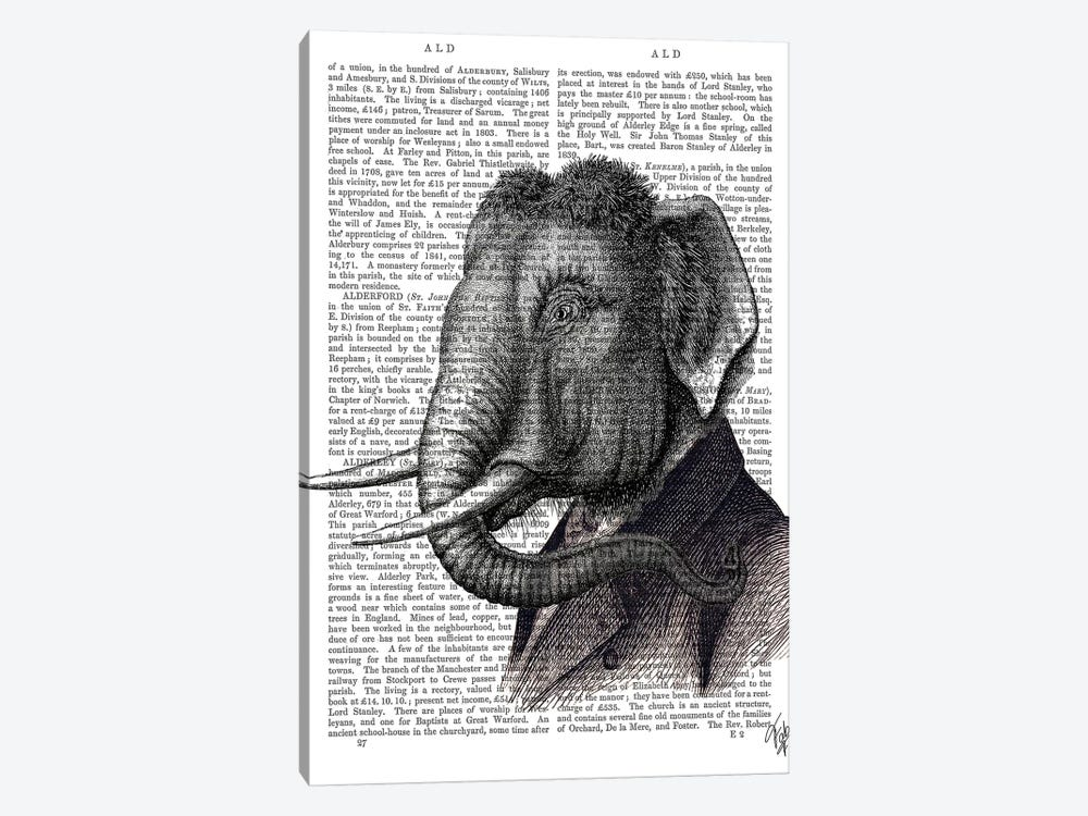 Elephant Portrait by Fab Funky 1-piece Canvas Art Print