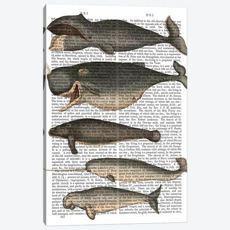 Five Vintage Whales Canvas Print #FNK1044} by Fab Funky Canvas Wall Art