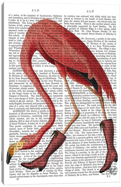 Flamingo In Pink Boots Canvas Art Print