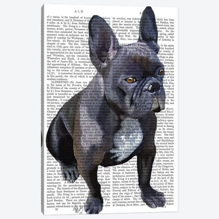 French Bulldog Canvas Print #FNK1065} by Fab Funky Canvas Artwork