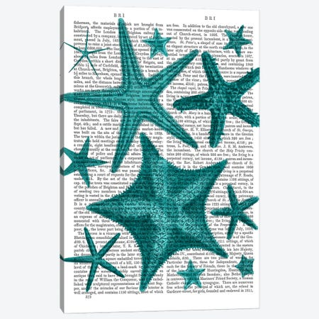Green Starfish Collection Canvas Print #FNK1084} by Fab Funky Canvas Artwork