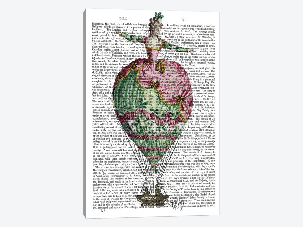 Hot Air Balloon Woman II by Fab Funky 1-piece Canvas Wall Art