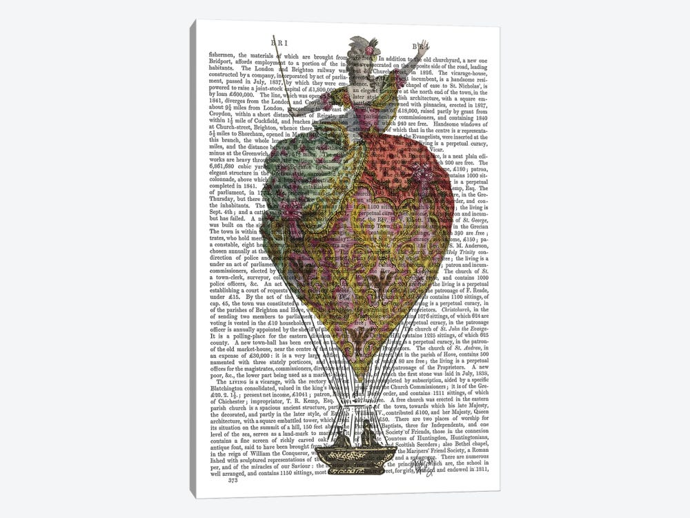 Hot Air Balloon Woman III by Fab Funky 1-piece Canvas Print