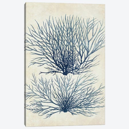 Indigo Blue Seaweed I Canvas Print #FNK1114} by Fab Funky Canvas Artwork