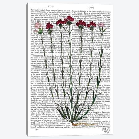 Italian Carnation IV Canvas Print #FNK1123} by Fab Funky Canvas Artwork