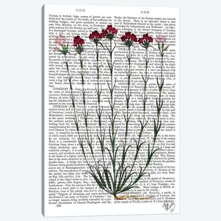 Italian Carnation IV Canvas Print #FNK1123} by Fab Funky Canvas Artwork