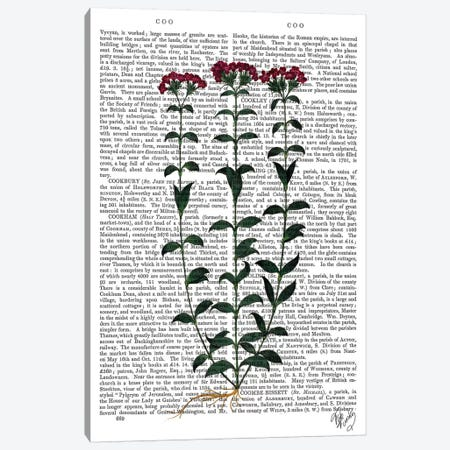 Italian Carnation VI Canvas Print #FNK1125} by Fab Funky Canvas Art Print