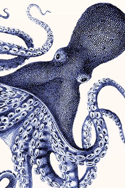 Thick Design 4.2-Inch Cute Little Octopus Style Decorative Blue
