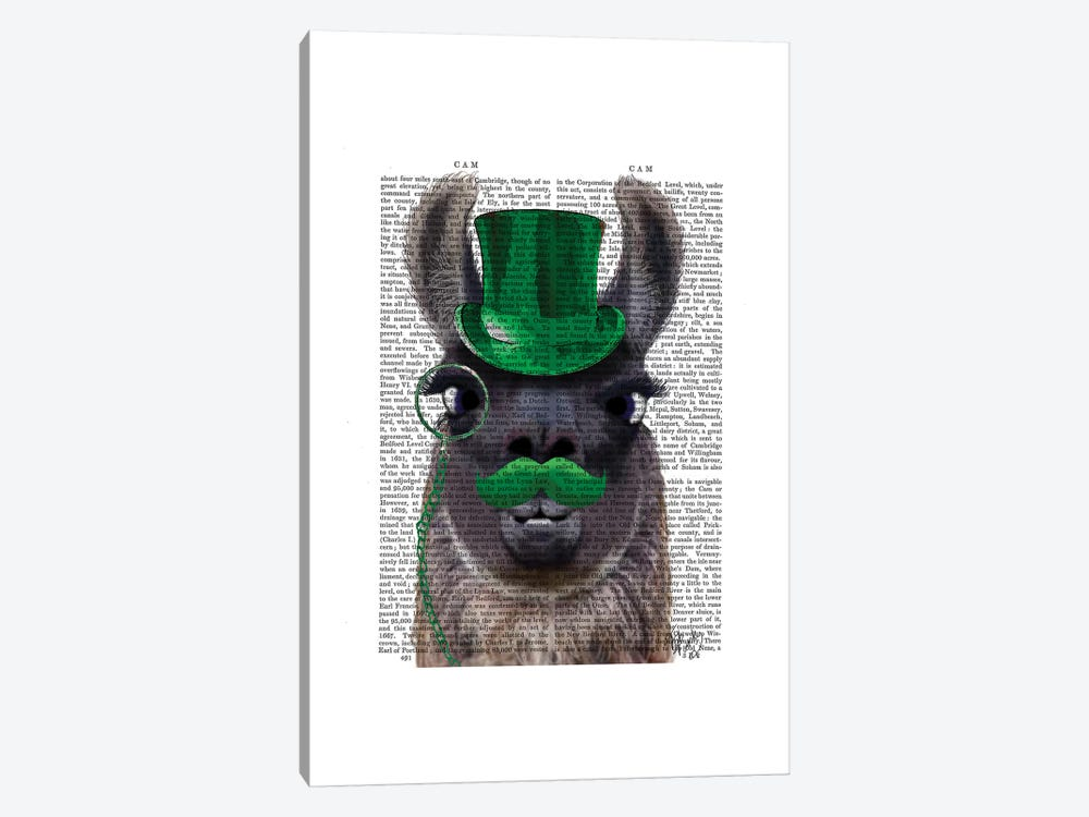 Llama With Green Top Hat & Moustache 1-piece Canvas Wall Art