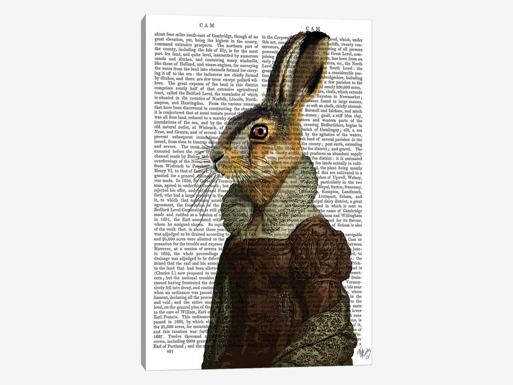 Madam Hare, Print BG by Fab Funky 1-piece Canvas Art
