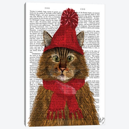 Maine Coon Cat Canvas Print #FNK1149} by Fab Funky Canvas Art