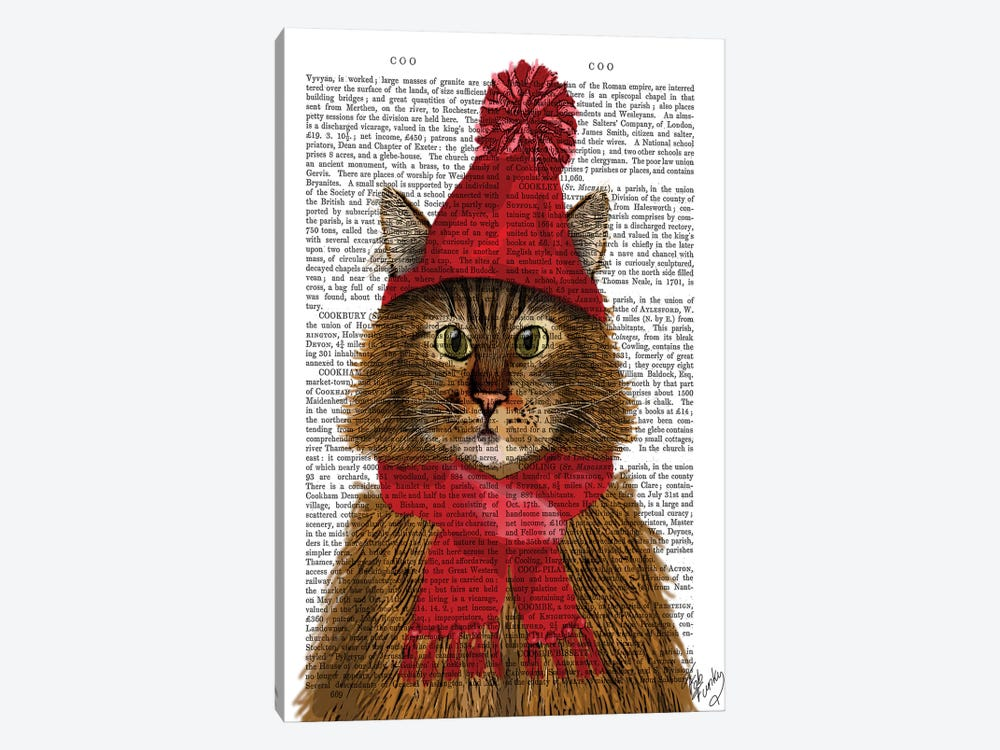 Maine Coon Cat by Fab Funky 1-piece Art Print
