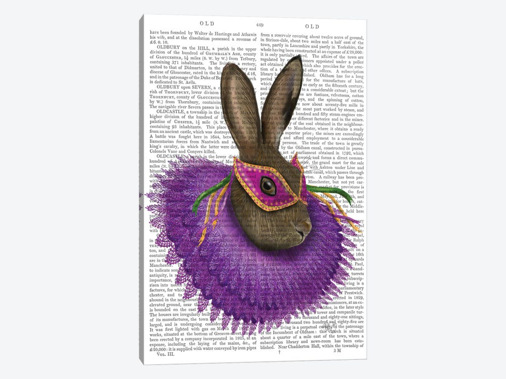 Mardi Gras Hare, Print BG by Fab Funky 1-piece Canvas Artwork
