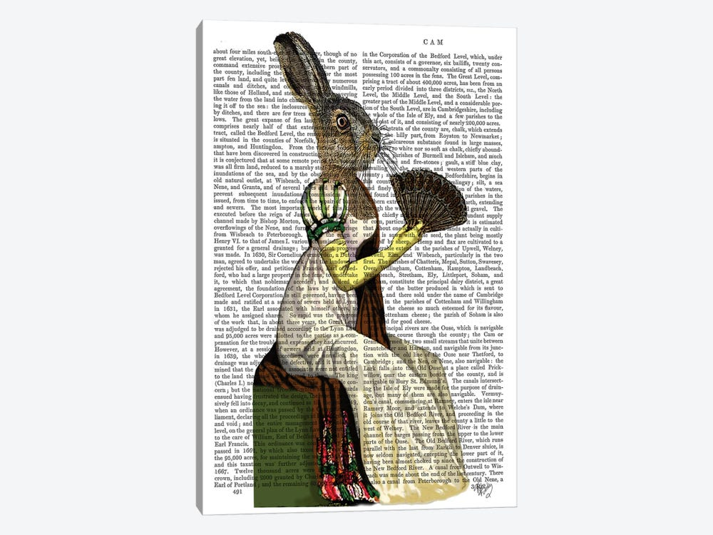 Miss Hare, Print BG by Fab Funky 1-piece Art Print