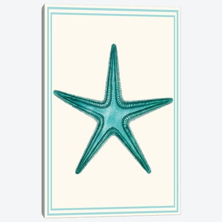Mixed Nautical Turquoise On Cream VI 3-Piece Canvas #FNK1162} by Fab Funky Canvas Wall Art