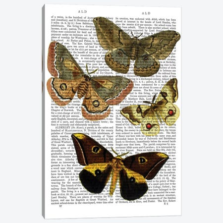 Moth Plate III Canvas Print #FNK1172} by Fab Funky Art Print
