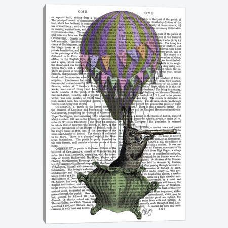 Navigating Rabbit, Print BG Canvas Print #FNK1177} by Fab Funky Canvas Art