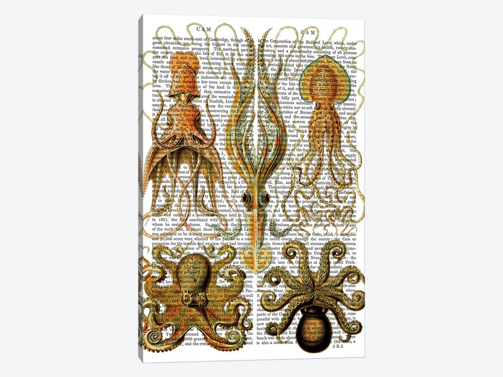 Octopus & Squid by Fab Funky 1-piece Canvas Print
