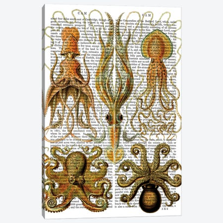 Octopus & Squid Canvas Print #FNK1181} by Fab Funky Canvas Artwork