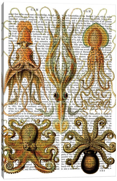 Octopus & Squid Canvas Art Print