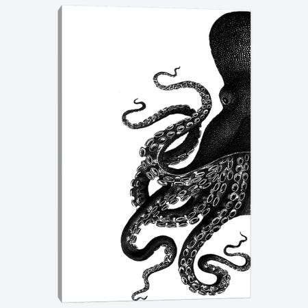 Octopus, Black & White I Canvas Print #FNK1195} by Fab Funky Canvas Art