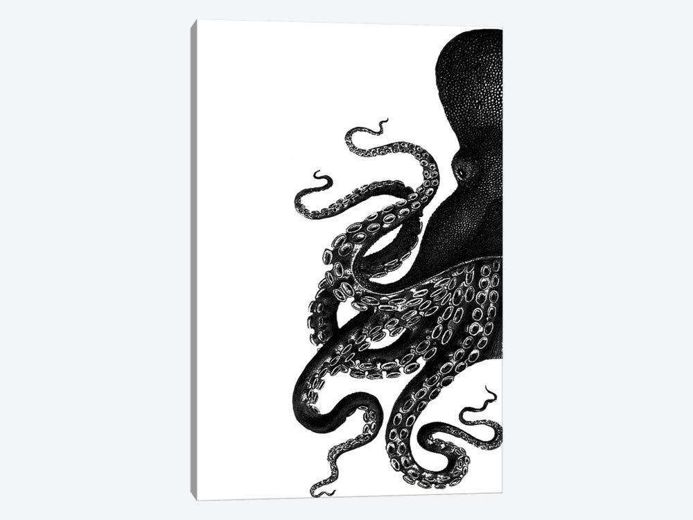 Octopus, Black & White I by Fab Funky 1-piece Canvas Artwork