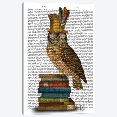 Owl On Books Canvas Print #FNK1202} by Fab Funky Canvas Art Print