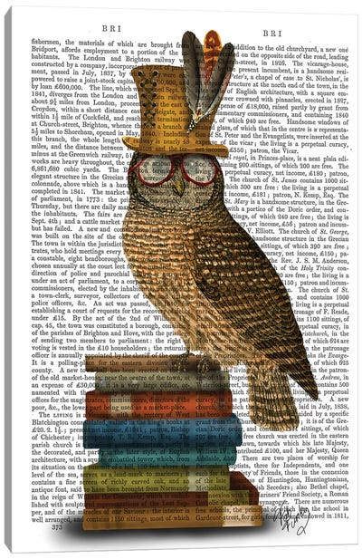 Owl On Books Canvas Art Print