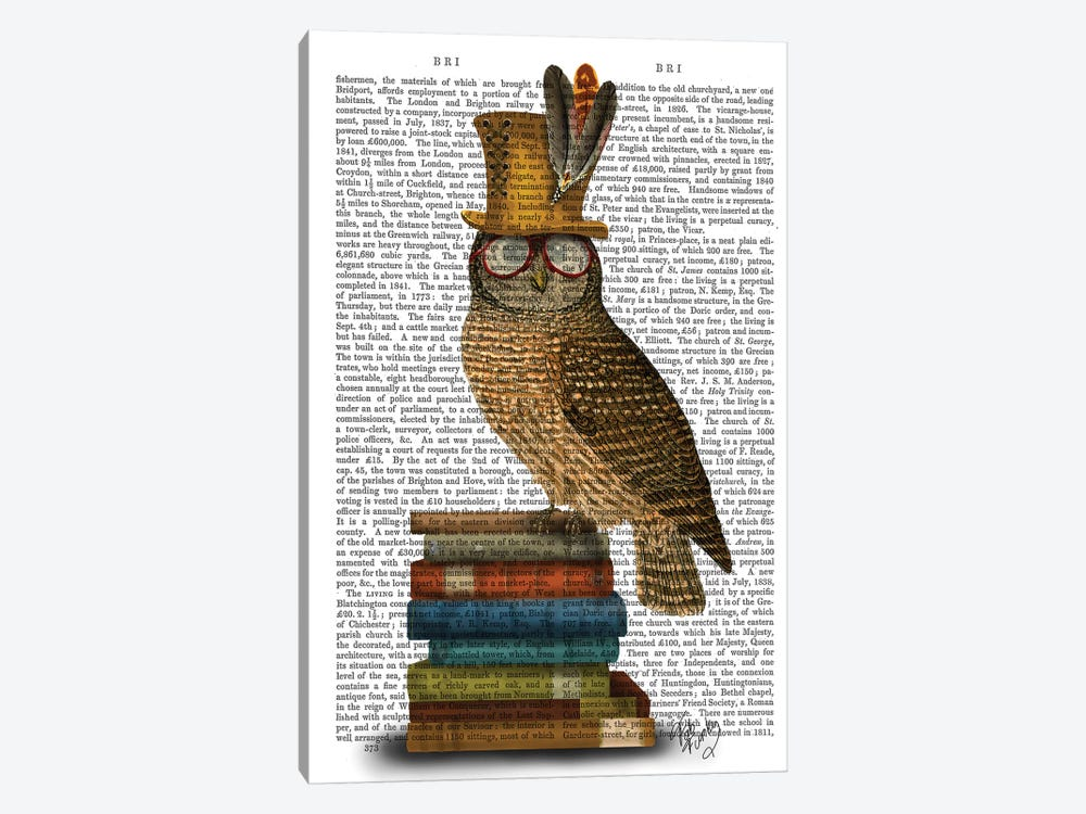 Owl On Books by Fab Funky 1-piece Canvas Wall Art