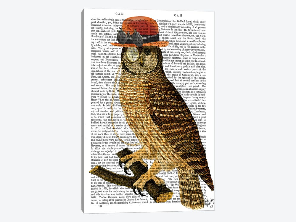 Owl With Steampunk Style Bowler Hat by Fab Funky 1-piece Canvas Wall Art