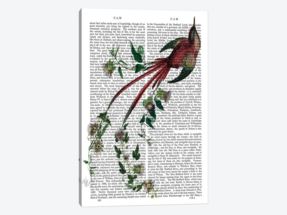 Passion Flower Bird by Fab Funky 1-piece Canvas Art Print