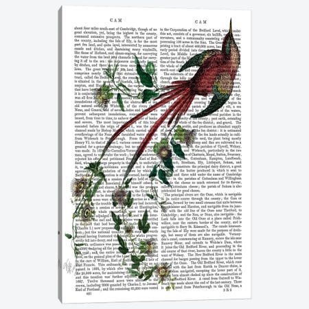 Passion Flower Bird 3-Piece Canvas #FNK1209} by Fab Funky Canvas Print